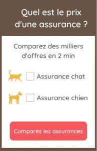 comparer les assurances pour chiens et chats