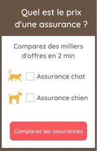 comparer les prix des mutuelles pour animaux