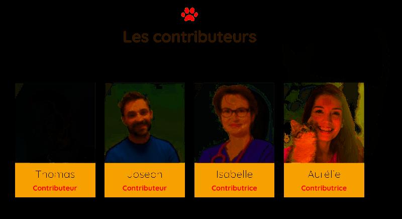 contributeurs du mammouth dechainé